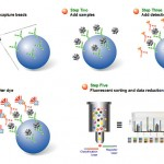 multiplex assay bio rad