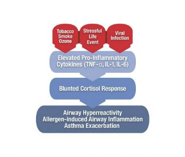 childhood asthma stress factors